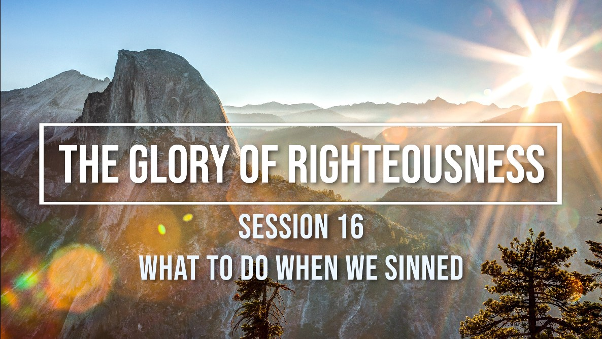 Session 16 - What to Do When We Sinned Image
